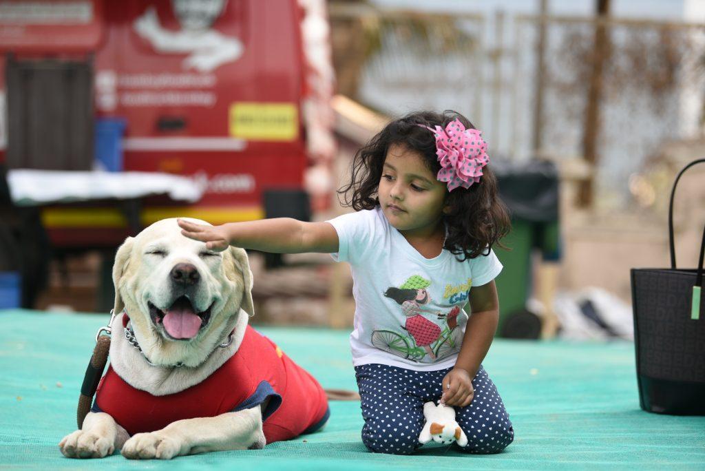 Pet Festival in Mumbai