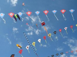 International Kite Festival, Jaipur