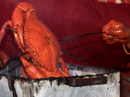 versova seafood festival 2020